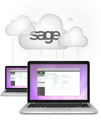 05-Access Sage Hosting Services for the Business Development of Company